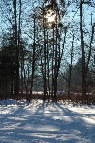 Scopa Landscape 7