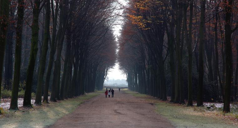 Bruehl Countryside 1