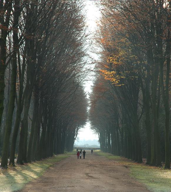 Bruehl Countryside 2