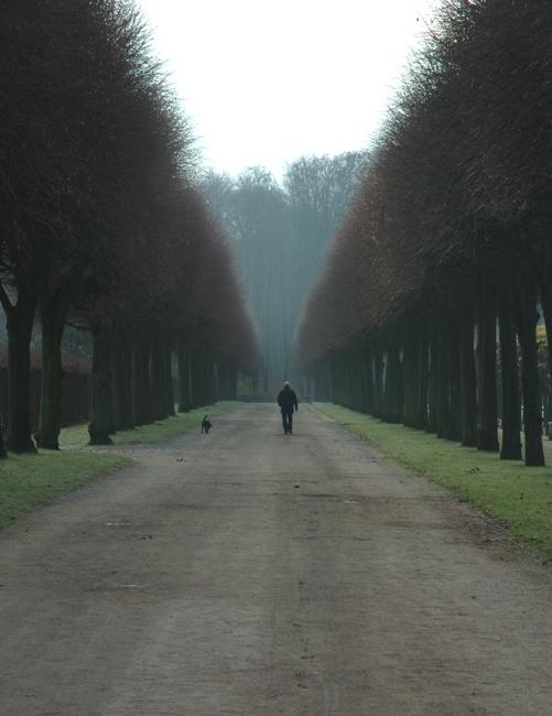 Bruehl Countryside 3